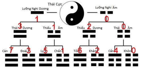 hinh-tu-tuong_binary