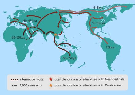 map_human_migration